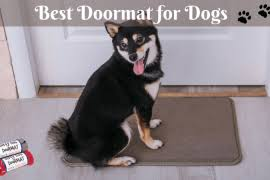Soggy Doggy Doormat Soggy Doggy Doormat Reviewed And Compared