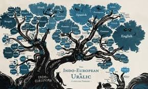 the roots of language paul ibbotson and michael tomasello