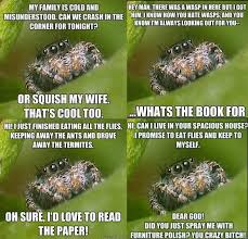 Cute Spider Memes - i feel bad because i hate spiders so much and that makes this that