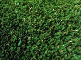 Astro Turf Outdoor Rug Outdoor Grass Carpet Installation U2014 Steveb Interior Outdoor