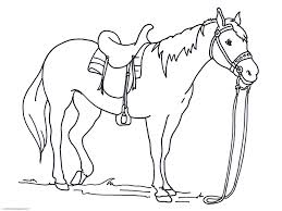 coloring pages free printable horse head coloring pages designs