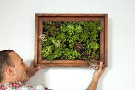 How To Make Vertical Garden Wall - how to make a vertical garden the crafty gentleman