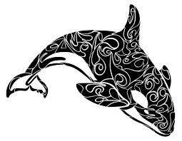 best 25 orca art ideas on pinterest whale art whale painting