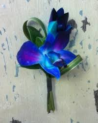 blue boutonniere 50 shades of blue orchid boutonniere in maple grove mn maple