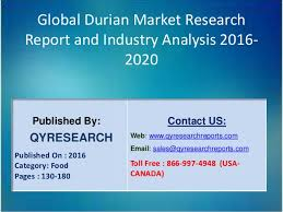 global durian industry 2016 market trends decoration designs growth