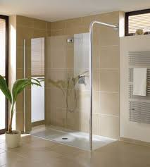 trend homes small bathroom shower design trend homes modern walk in shower ideas photos projects to try
