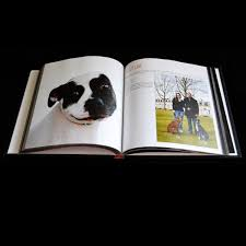 dog coffee table books we are pitbulls coffee table book dog park publishing