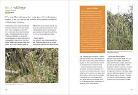 how to plant native grasses california foraging 120 wild and flavorful edibles from evergreen