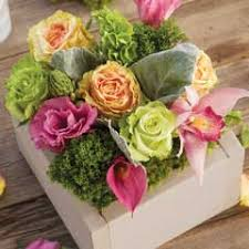 flower delivery free shipping bright flower arrangements flower delivery olive cocoa