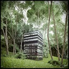 listen to the forest u0027s whisper inside japanese forest house