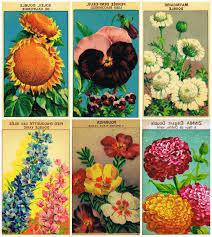 printable vintage seed packet banner knick of time