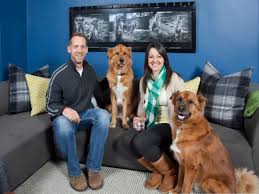 hgtv small living room ideas hgtv s tips for turning a small space into a multipurpose room hgtv