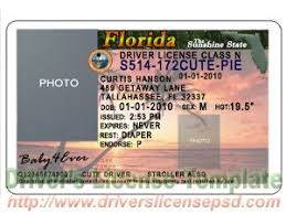 Florida Drivers License Template drivers license drivers license drivers license psd