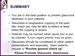 Blindness Chapter Summaries Glaucoma New Zealand A Charitable Trust Ppt Online Download