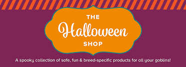Costumes Party Invitation Wording Festival Collections Best 25 Halloween Pets Costumes Toys Treats U0026 More At Petsmart