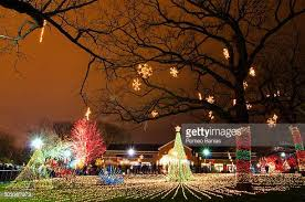 Stone Zoo Christmas Lights by Lincoln Park Zoo Stock Photos And Pictures Getty Images