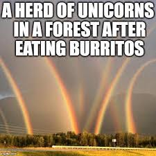 Unicorn Rainbow Meme - oh you silly unicorns imgflip