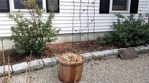 garden hack 2 wine cork mulch garden with grace