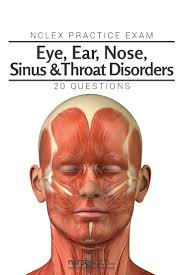 Anatomy And Physiology Ear 46 Best Eye Ear Nose Sinus U0026 Throat Disorders Images On