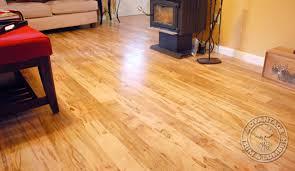 ambrosia maple flooring wormy maple floor