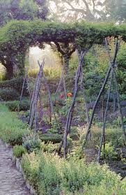 love the border around garden softens square plot and rustic bean