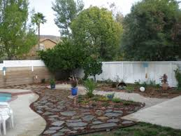 Backyard For Dogs by French Drain And Potty Post And Tree Backyard Landscaping Ideas
