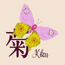 vector flat illustration of butterfly and chrysanthemum japanese