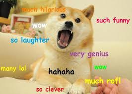 Funniest Doge Meme - funny doge memes memes pics 2018