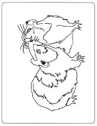 7 coloriages de hamster à imprimer  Coloriage One