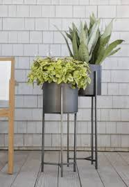 plant stand unusual pot plant stand photo concept 0398836
