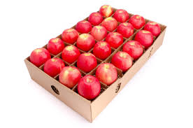 organic fruit delivery pink apple 24 ct organic fruit delivery fruitshare