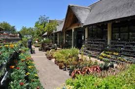 Kirstenbosch Botanical Gardens Kirstenbosch Garden Centre Sanbi