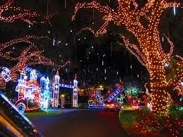 palm harbor christmas lights chic design tropical christmas lights outdoor decorations tree