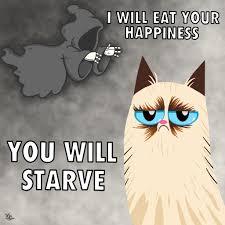 Grump Cat Meme - grumpy cat meme by kaylinn