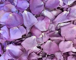 Real Flower Petal Confetti - real rose petals wedding petals flower by farmgirlrosepetals