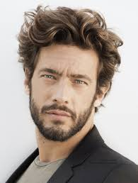 beard styles for men with curly hair men u0027s hairstyles