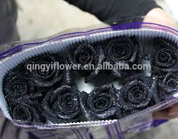 black roses for sale buy cheap china ordering black roses products find china ordering