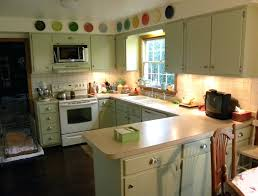 Staining Kitchen Cabinets Cost Kitchen My Green Kitchen Book Nz Kitchen Remodeling Contractors