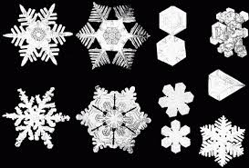 snowflake bentley ask ethan could you have two perfectly identical snowflakes
