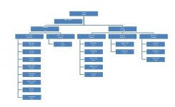 100 organizational chart template word management structure