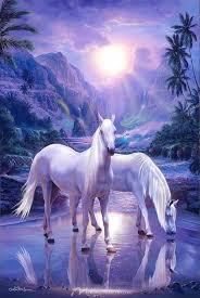 horse wall murals wallpaper murals of horses peaceful moment
