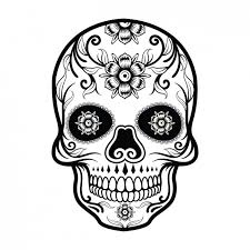 watercolor skull with flowers vector free