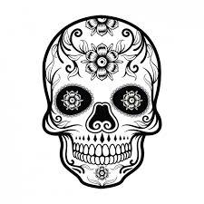 skulls vectors photos and psd files free