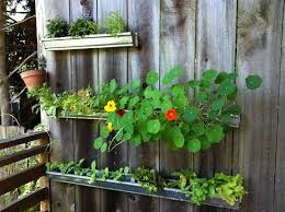 Ideas Garden 13 Vertical Diy Gutter Garden Ideas For Small Spaces