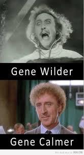 Funny Wonka Memes - gene wilder aka willy wonka meme guy humor funny pinterest