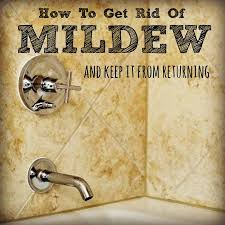 How To Get Mildew Out Of Curtains How To Get Rid Of Mildew And Keep It From Returning Housewife