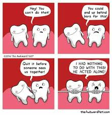 Braces Memes - best 25 braces meme ideas on pinterest braces off braces