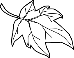 coloring pages leave coloring pages orange autumn leaf page