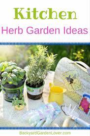kitchen herb garden ideas backyard garden lover