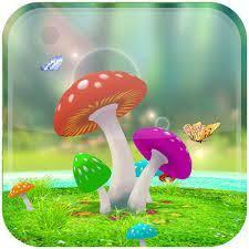wallpaper 3d mushroom 3d mushroom live wallpaper download from 9apps 9apps